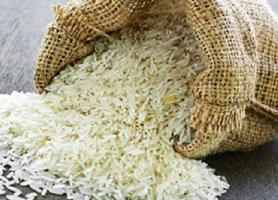 خرید توافقی برنج از کشاورزان گیلانی شروع شد