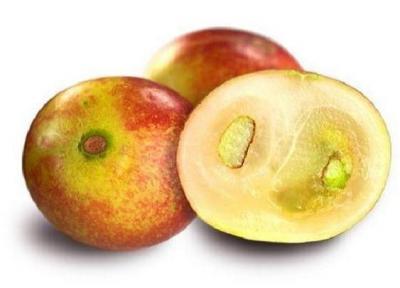 میوه ای که از چاقی و بیماری های متابولیک پیشگیری می نماید