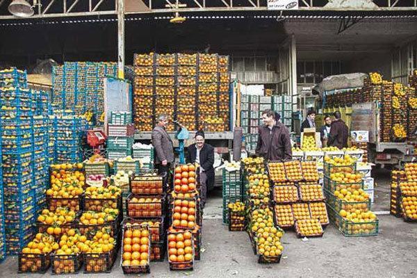 صادرات محصولات باغی رشد یافت، اصلاح باغات فرسوده