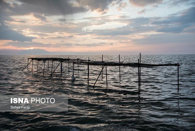 ورود 560 میلیون مترمکعب آب سدهای آذربایجان غربی به دریاچه ارومیه