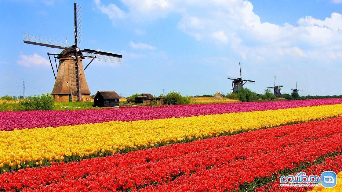 سفر به هلند ، کشور زیبای گل ها و کانال ها