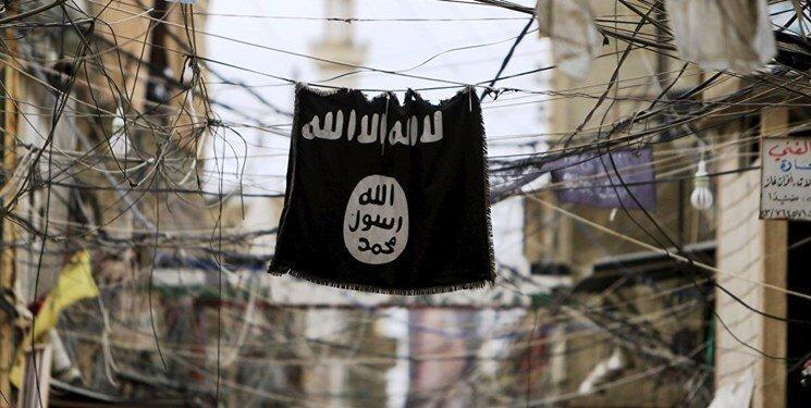 شبه نظامیان کُرد سوریه: سخنگوی داعش کشته شد