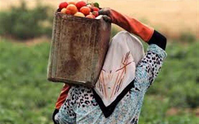 ضرورت آموزش زنان روستایی برای فراوری محصولات سالم