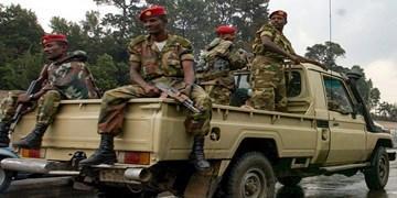 وزیر خارجه اسبق اتیوپی در درگیری های تیگرای کشته شد