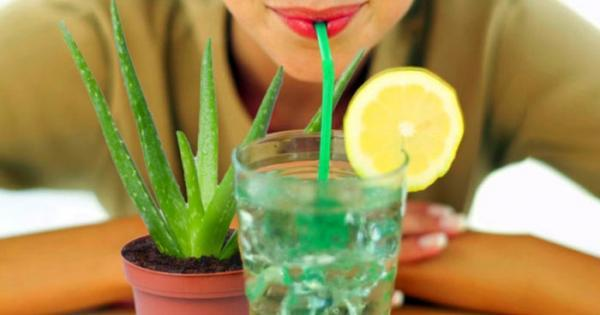 آشنایی با خواص نوشیدنی آلوورا