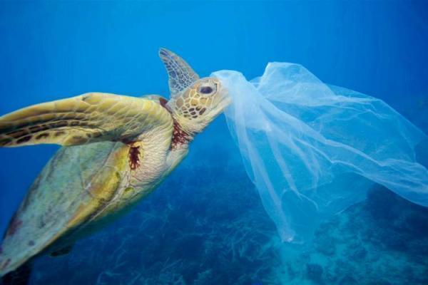 دو دقیقه برای نجات محیط زیست مان وقت بگذاریم