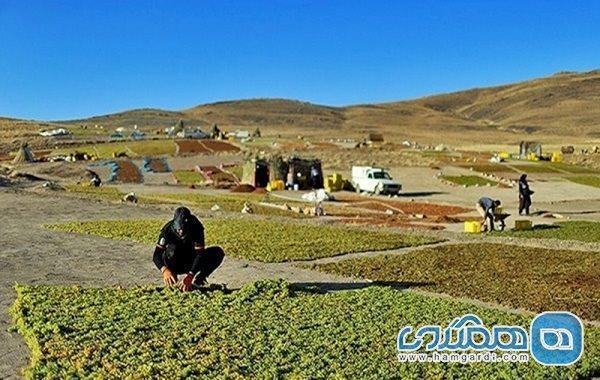 گردشگری در محور دره جوزان ملایر توسعه می یابد