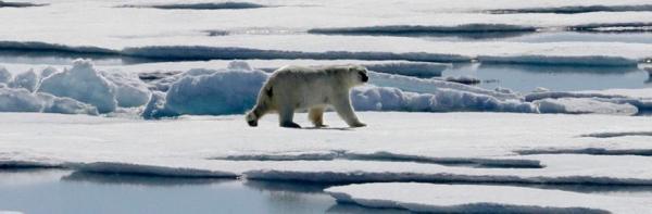ویزای کانادا: کانادا سریع تر از دیگر نقاط دنیا در حال گرم شدن است