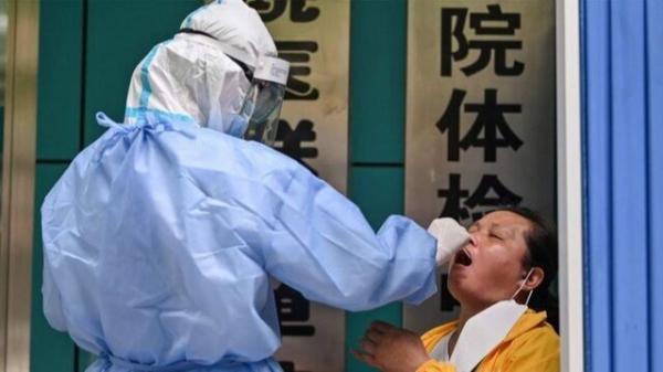 ویروس کرونا احتمالا 20 تا 50 سال پیش مخفی شده بود